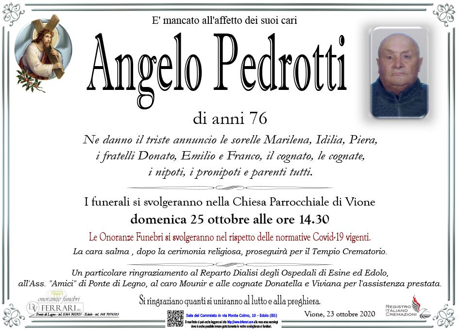 ANGELO PEDROTTI - VIONE
