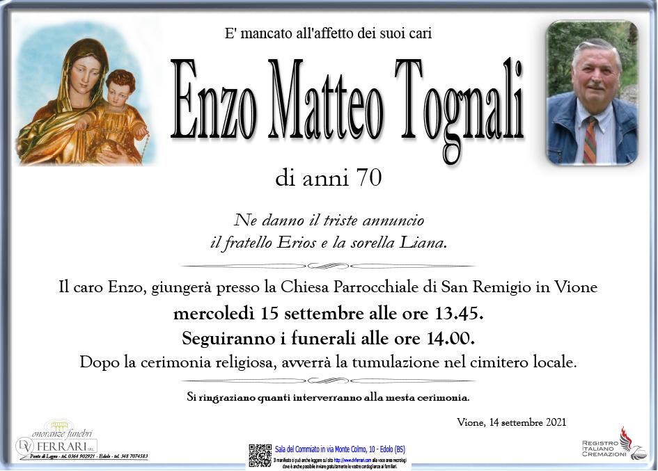 ENZO TOGNALI - VIONE