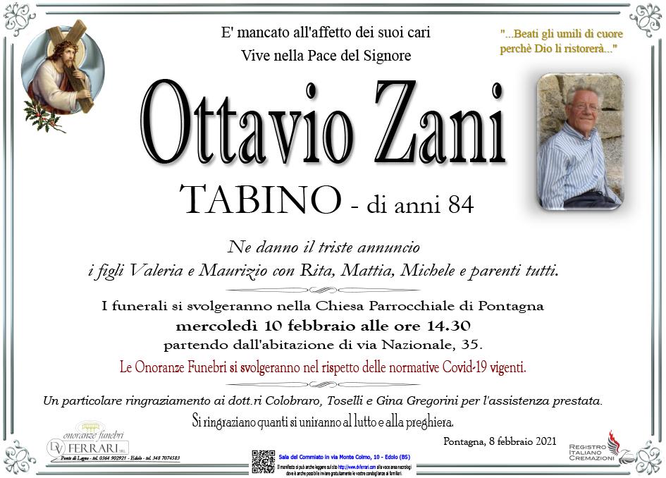 OTTAVIO TABINO ZANI - PONTAGNA